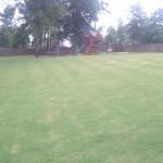 backyard long